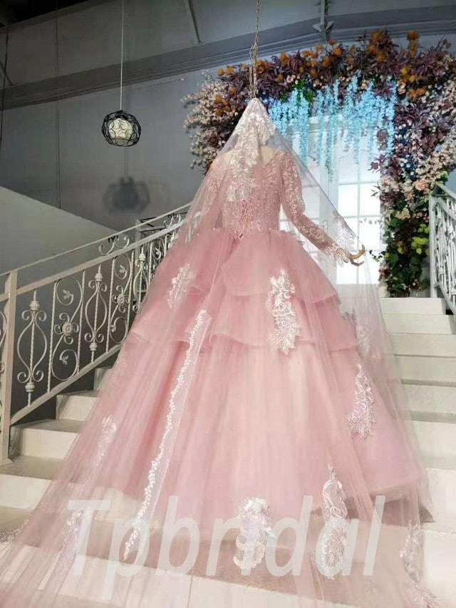 Pink Ball Gown Prom Dress Princess Long Sleeve With Veil